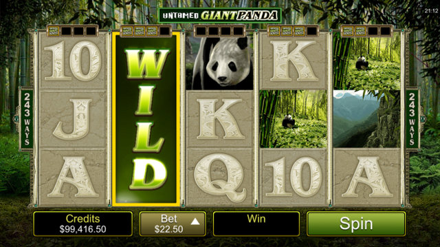 Untamed Giant Panda Slot Review