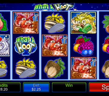 What A Hoot Slot Review