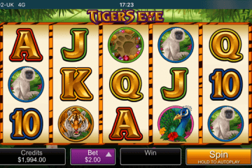 Tigers Eye Slot Review