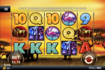 Safari Heat Slot Review