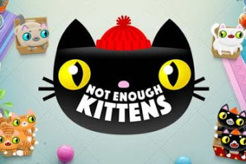 play not enough kittens