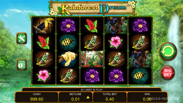 Rainforest Dream Slot Review